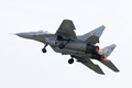 MiG-29, Polish Air Force